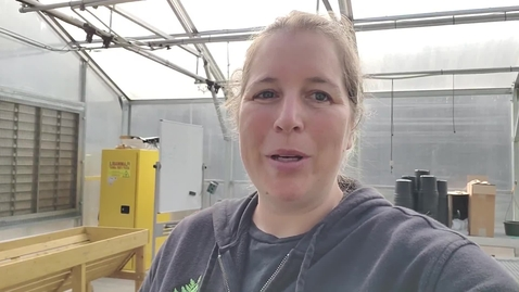Thumbnail for entry Greenhouse tour, plants and pollinators
