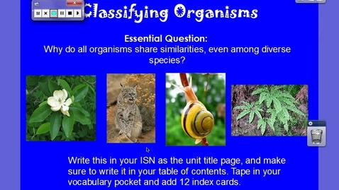 Thumbnail for entry Classifying Organisms