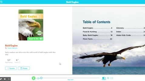 Thumbnail for entry Bald Eagle