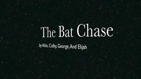 Thumbnail for entry The Bat Chase