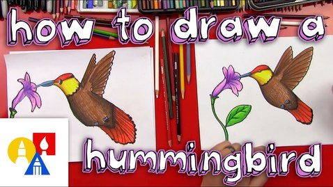 Thumbnail for entry How To Draw A Hummingbird