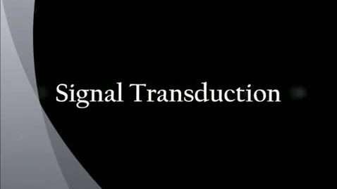 Thumbnail for entry Signal Transduction Animation
