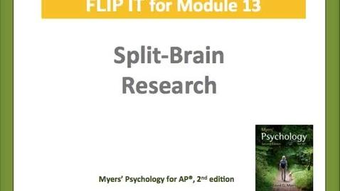 Thumbnail for entry Split Brain Research