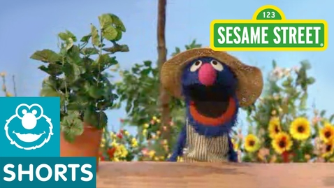 Thumbnail for entry Sesame Street: Grover Talks About Plants