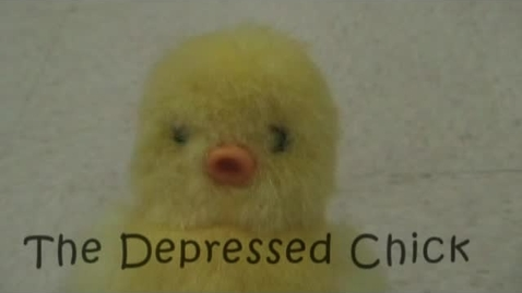 Thumbnail for entry The Depressed Chick Pilot