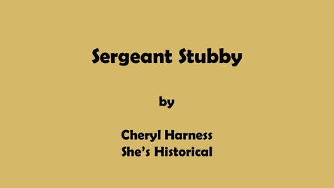 Thumbnail for entry Sergeant Stubby by Cheryl Harness, She's Historical