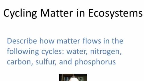 Thumbnail for entry Cycling Matter in Ecosystems