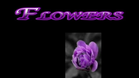 Thumbnail for entry Flowers