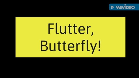 Thumbnail for entry Flutter, Butterfly!