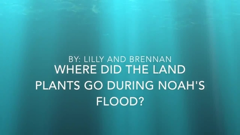 Thumbnail for entry Where Did the Land Plants Go During Noah's Flood?