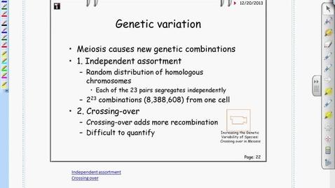 Thumbnail for entry Bio - Genetic Variation