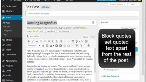 Thumbnail for entry Creating Blocked Quotes in an Edublogs Post