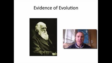 Thumbnail for entry Evidence of Evolution