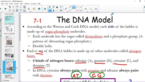 Thumbnail for entry The DNA Model