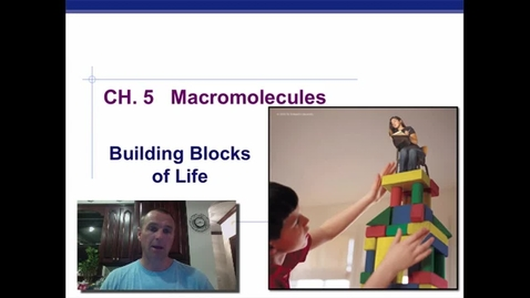 Thumbnail for entry Macromolecules