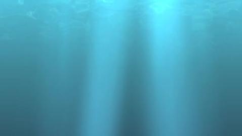 Thumbnail for entry Shark Attack TV 2-20-13