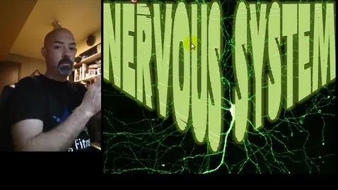 Thumbnail for entry Nervous System Part 1 - Membrane Potential