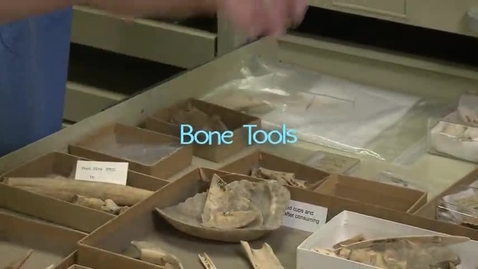 Thumbnail for entry Virginia's First People, Segment 5 — Bone Tools
