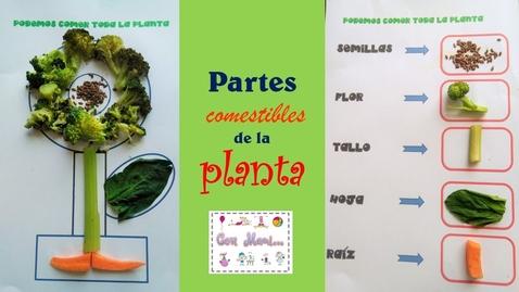 Thumbnail for entry Partes comestible de la planta para niños de preescolar