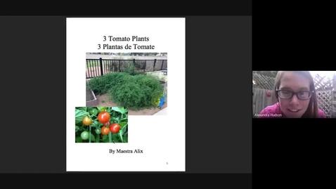 Thumbnail for entry 3 Tomato Plants