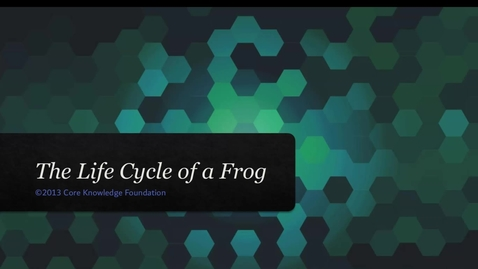 "Thumbnail for entry CKLA Domain 6 Lesson 7 ""The Life Cycle of a Frog"""