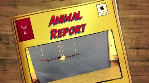 Thumbnail for entry Jaedan's Animal Report