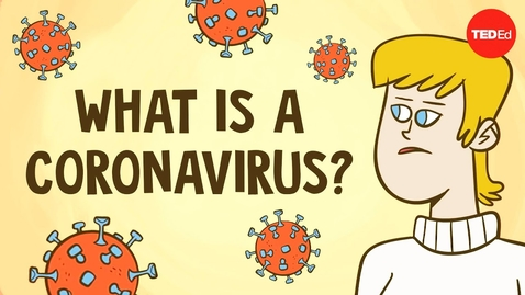 Thumbnail for entry What is a coronavirus? - Elizabeth Cox