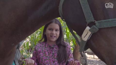Thumbnail for entry Veterinario: explicado para niños | Y tú ¿en qué trabajas?