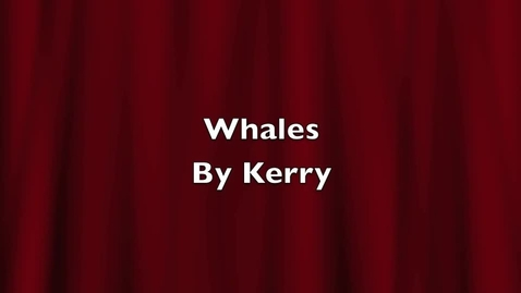 Thumbnail for entry Whales by Kerry
