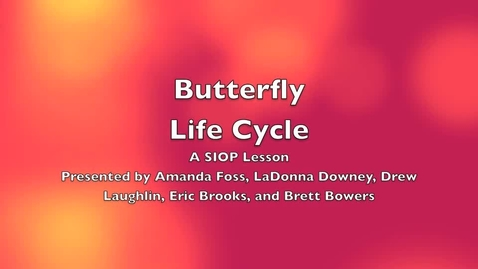 Thumbnail for entry Life Cycle of a Butterfly- A SIOP Lesson