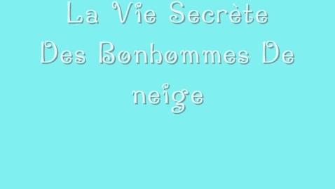 Thumbnail for entry 44  Le vie secrete de bonhommes de niege