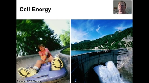Thumbnail for entry Energy Transformations and ATP