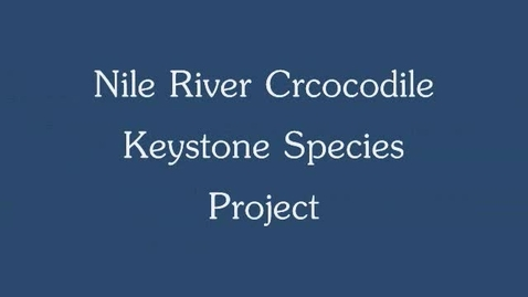 Thumbnail for entry Nile Crocodile