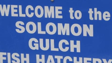 Thumbnail for entry Valdez Hatchery