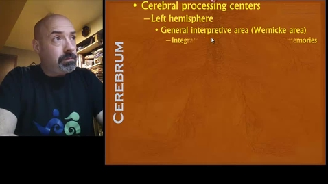 Thumbnail for entry Nervous System Part 6b - The Cerebrum and the Rest