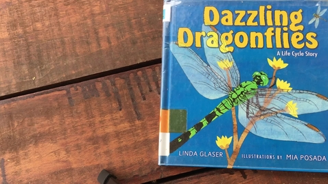 Thumbnail for entry Read Aloud Dazzling Dragonflies 4-20-20