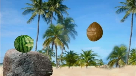 Thumbnail for entry The Coconut and the Watermelon