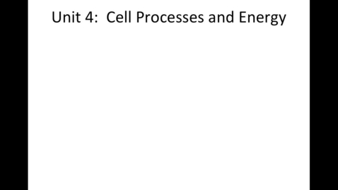Thumbnail for entry Unit 4: Cell Processes & Energy, Video 1 Photosynthesis