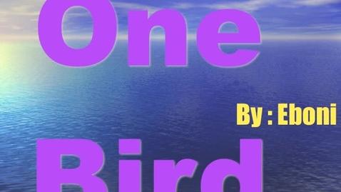 Thumbnail for entry Eboni's Bird Photostory