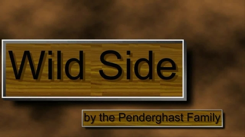 Thumbnail for entry Wild Side Music Video