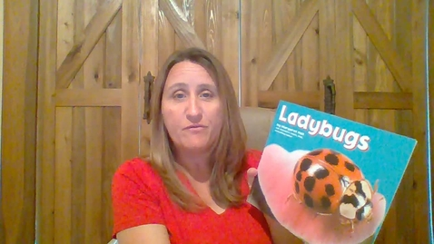 Thumbnail for entry Ladybugs Read Aloud