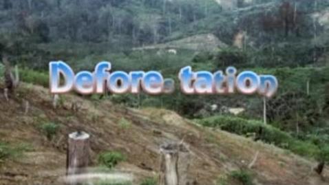 Thumbnail for entry Deforestation#1
