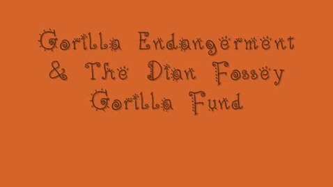 Thumbnail for entry Gorillas and the Dian Fosse Gorilla Fund