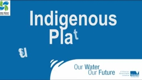 Thumbnail for entry Geography Yr9 Kakadu Native Plants