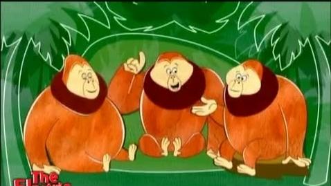 Thumbnail for entry GR-OrangutansElectricCo