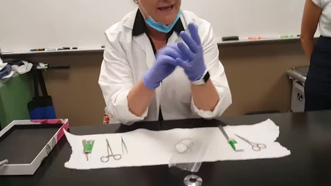 Thumbnail for entry Suturing Lesson