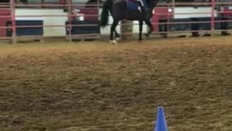 Thumbnail for entry Avery Horseback Riding
