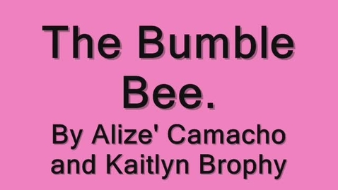 Thumbnail for entry The bumblebee