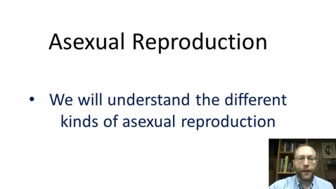 Thumbnail for entry Asexual Reproduction
