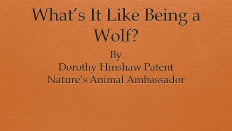 Thumbnail for entry What's It Like Being a Wolf? by Dorothy Hinshaw Patent, Nature's Animal Ambassador